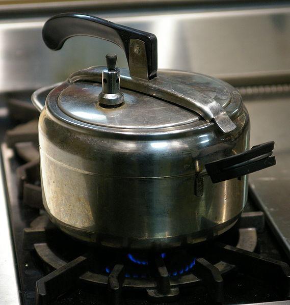 569px-Pressure_cooker_oval_lid.jpg