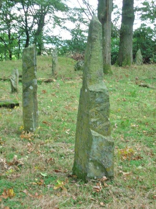 Temple_Wood_stone_circle_near_Auldgirth.JPG
